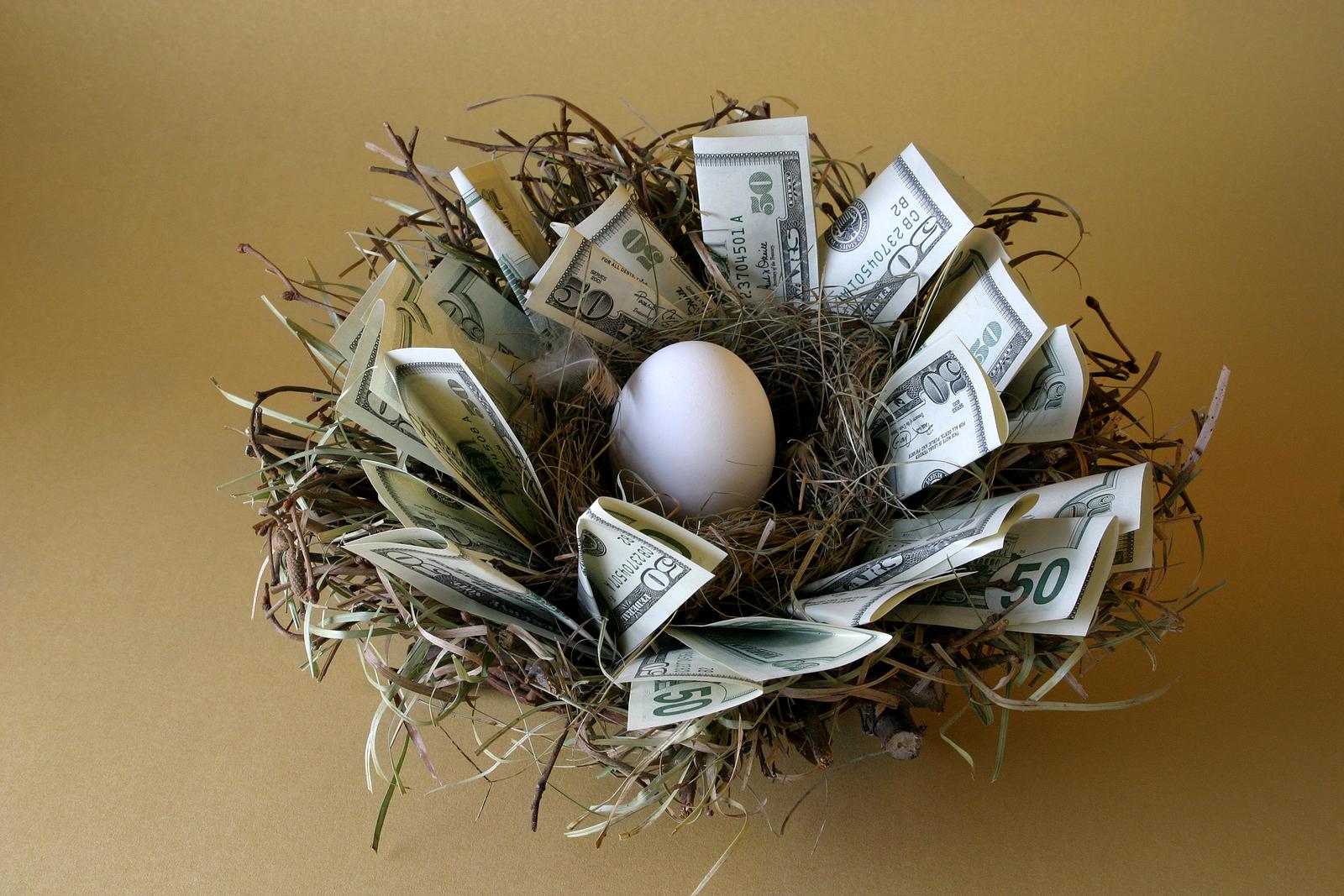 bigstock-Nest-Egg-342971