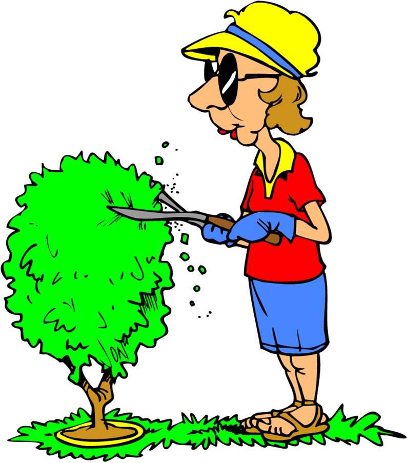 trim-tree